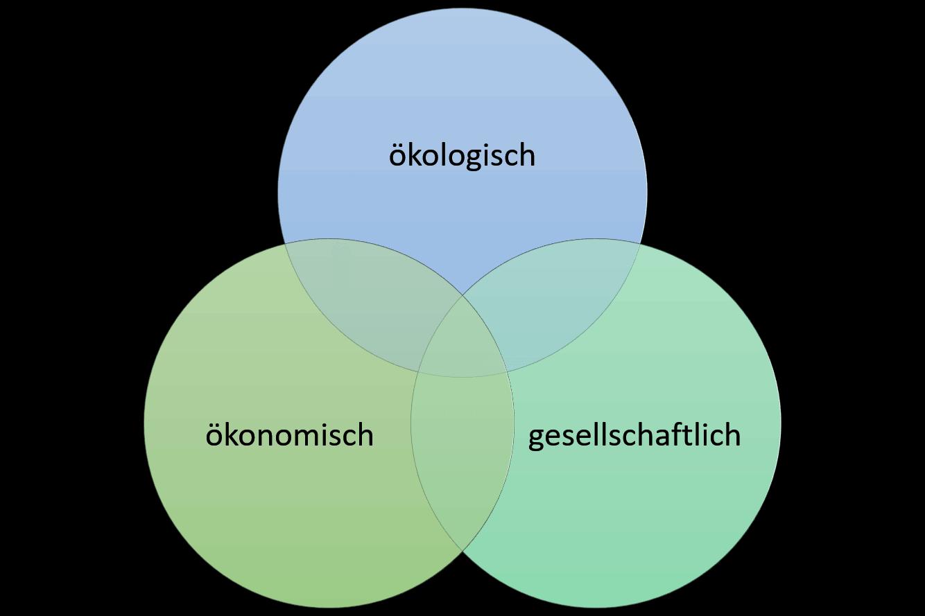 Dreieck der Nachhaltigkeit. Kreise ökonomisch, ökologisch, gesellschaftlich